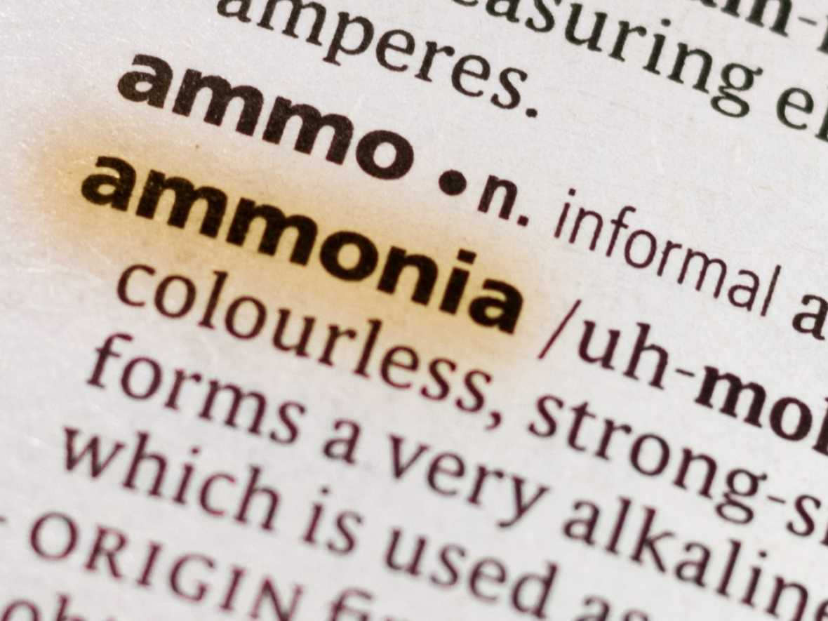 Ammonia – the answer to shipping's decarbonisation search?