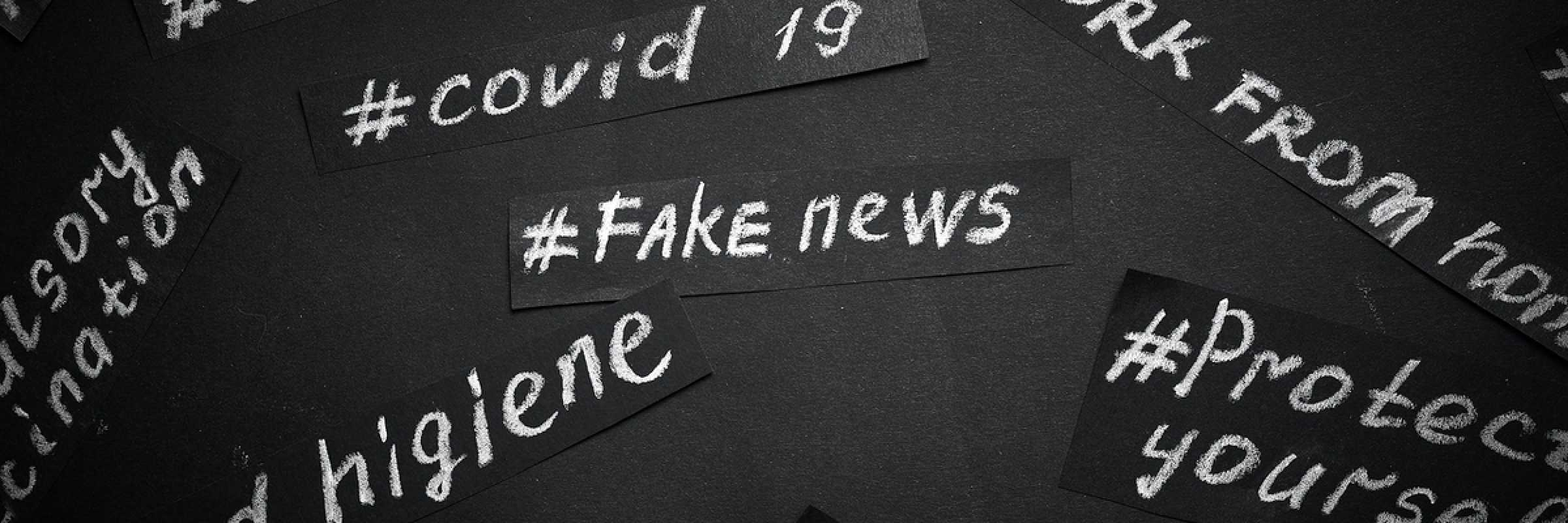 ShipInsight sets a standard for 'fake news'